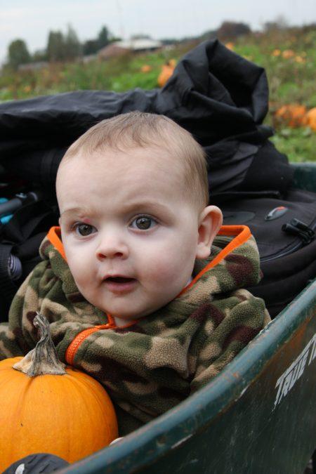 Steven-Pumpkin-1year-old (22)