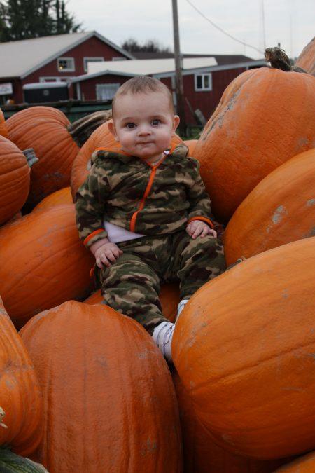 Steven-Pumpkin-1year-old (27)