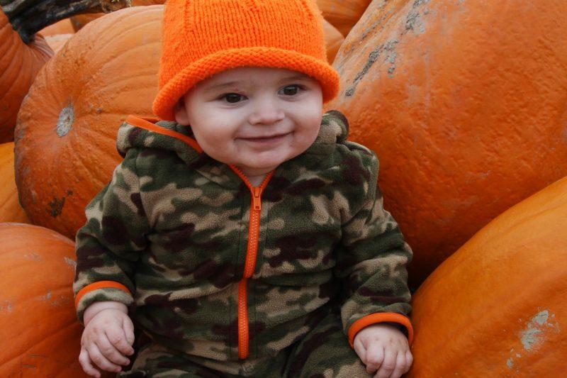 Steven-Pumpkin-1year-old (28)