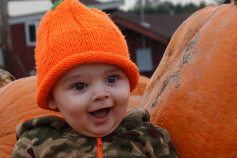 Steven-Pumpkin-1year-old (33)