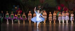 CannedSwank Dance Photo - Alice